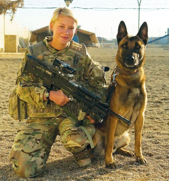 bac4421136b26897518164ef8fee0163--military-working-dogs-military-dogs